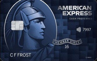 Amex has a good welcome bonus on this grocery shopping credit card.