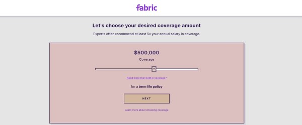 Fabric Life Insurance includes a visual, 10-minute application that can result in an instant issue policy offer.