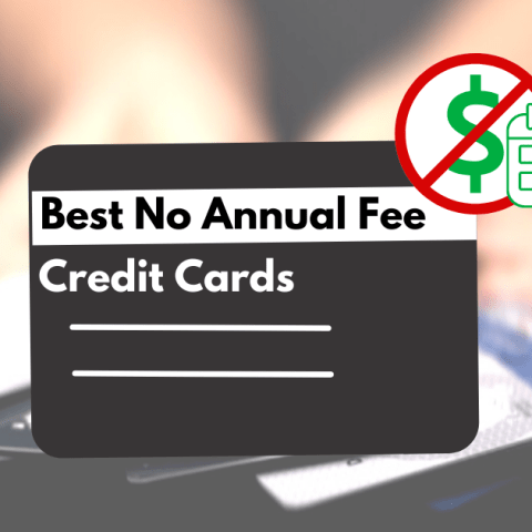 Credit cards with no annual fee can be a great way to earn rewards.