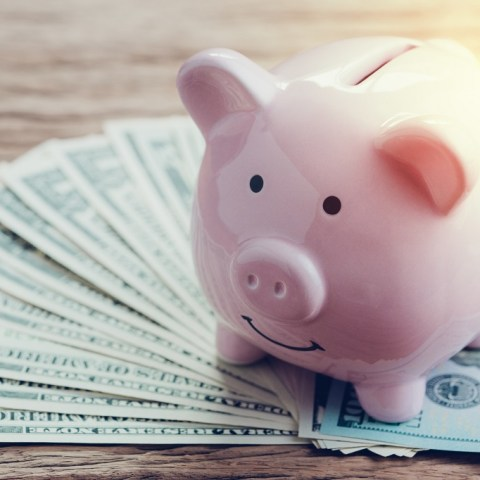 money in savings for piggy bank