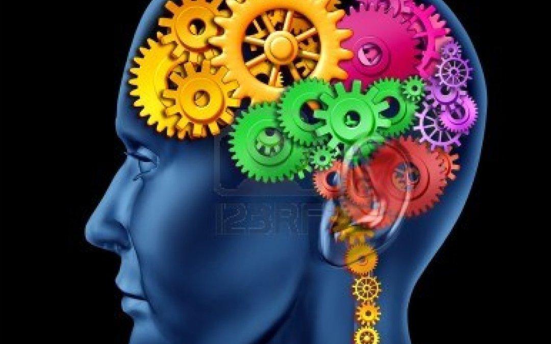 Frontal Lobe Neurology 102
