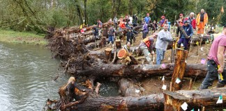 Salmon Stream Team