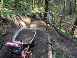 Photo courtesy: Whipple Creek Park Restoration