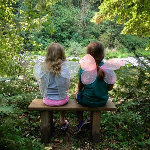2019 Clark County Summer Camps TreeSong Nature Awareness