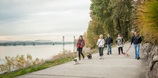 Winter walks in vancouver Columbia River Renaissance Trail