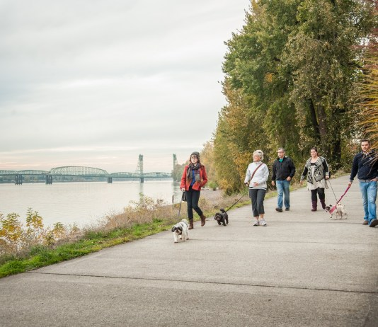 Winter walks in vancouver Columbia River Renaissance Trail