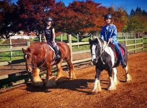 Ravenna riders 4-h covid lessons