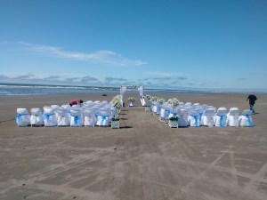 wedding grays Harbor beach wedding