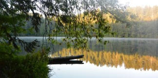 Clark-County-Battle-Ground-Lake-Early-Morning-Quiet-Sunrise