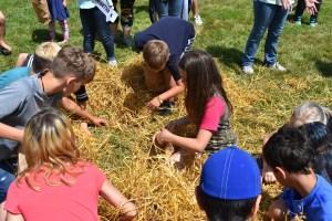 McCleary Bear Festival kids activities