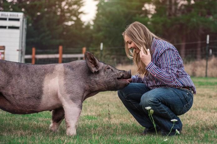 Clark county 4-h Kylie ballard pig