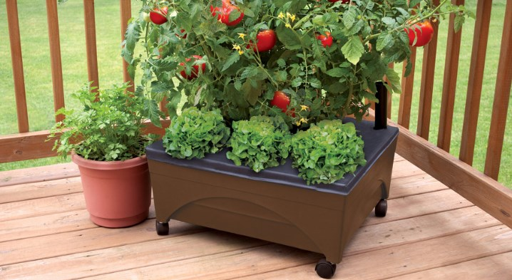 Emsco group earth brown raised garden bed for $20