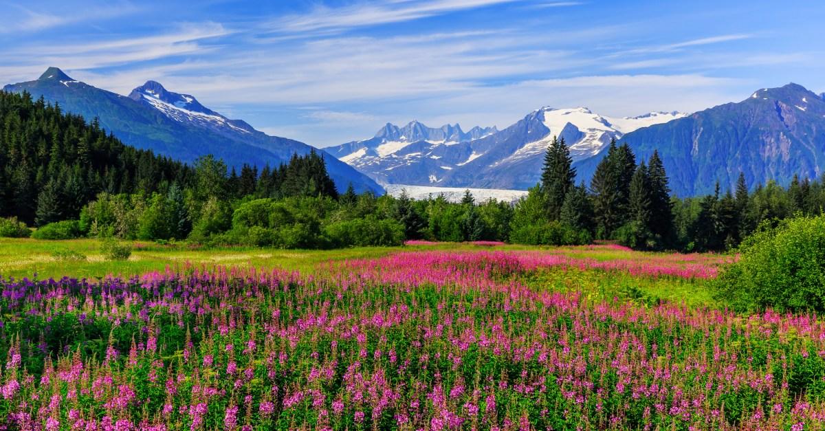 Flights to Alaska in the $300s round-trip!