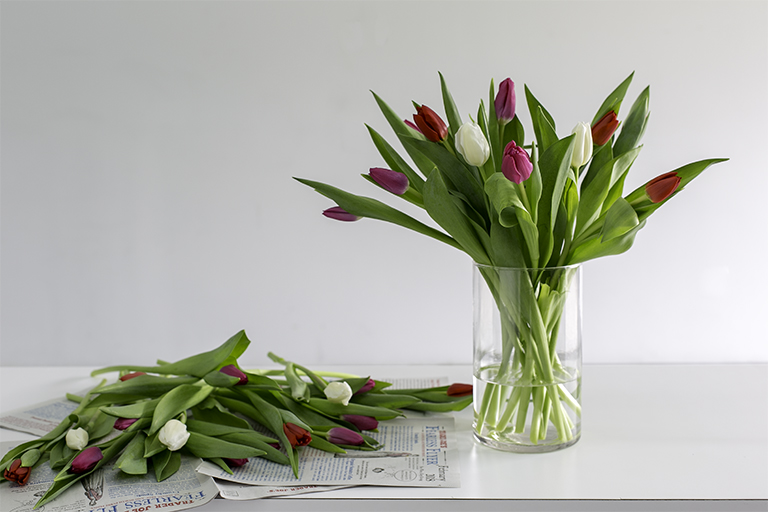 Valentine's Day flower deal: Two dozen tulips for $10.99