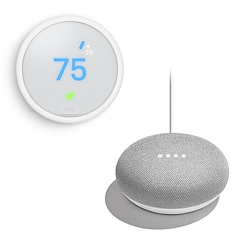 nest google mini