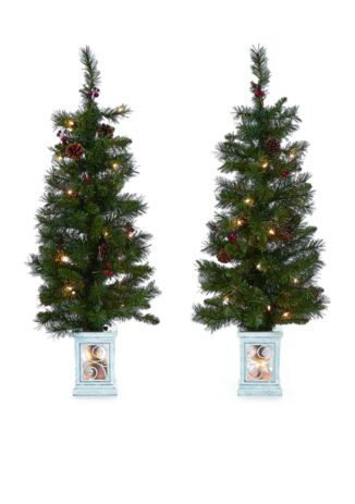 Modern Southern Home set of 2 porch trees for $35