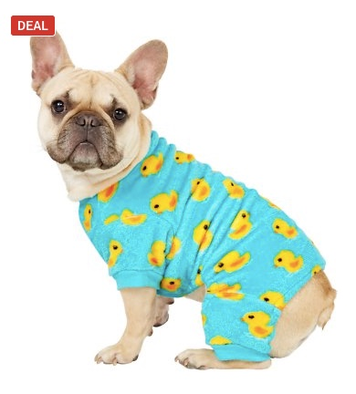 Save up to 50% on dog clothing & accessories at Chewy