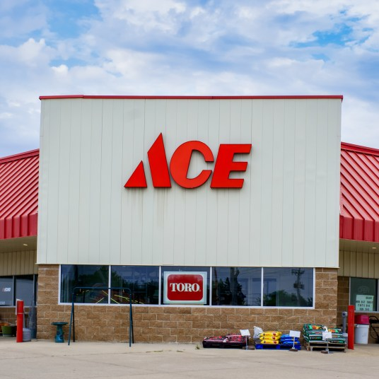 Ace Hardware Black Friday ad: Here are the best deals!