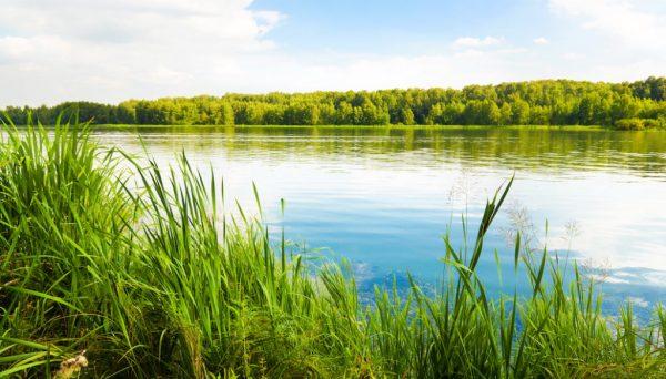 Clarke county reservoir update