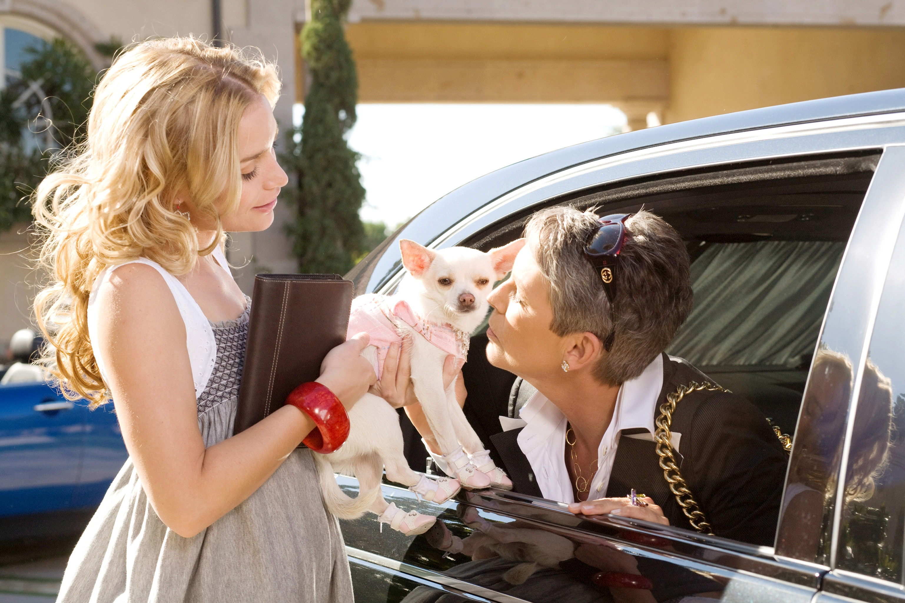 "Piper Perabo, left, and Jamie Lee Curtis with the canine star of ""Beverly Hills Chihuahua."""