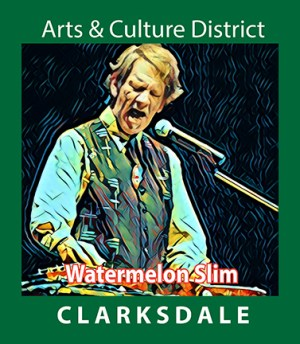 Current Clarksdale blues performer, Watermelon Slim.