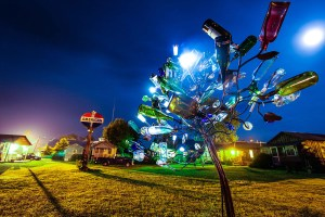 Do yo have your own bottle tree, yet?