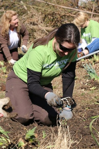 Volunteers dig in to build community garden | ClarksvilleNow com