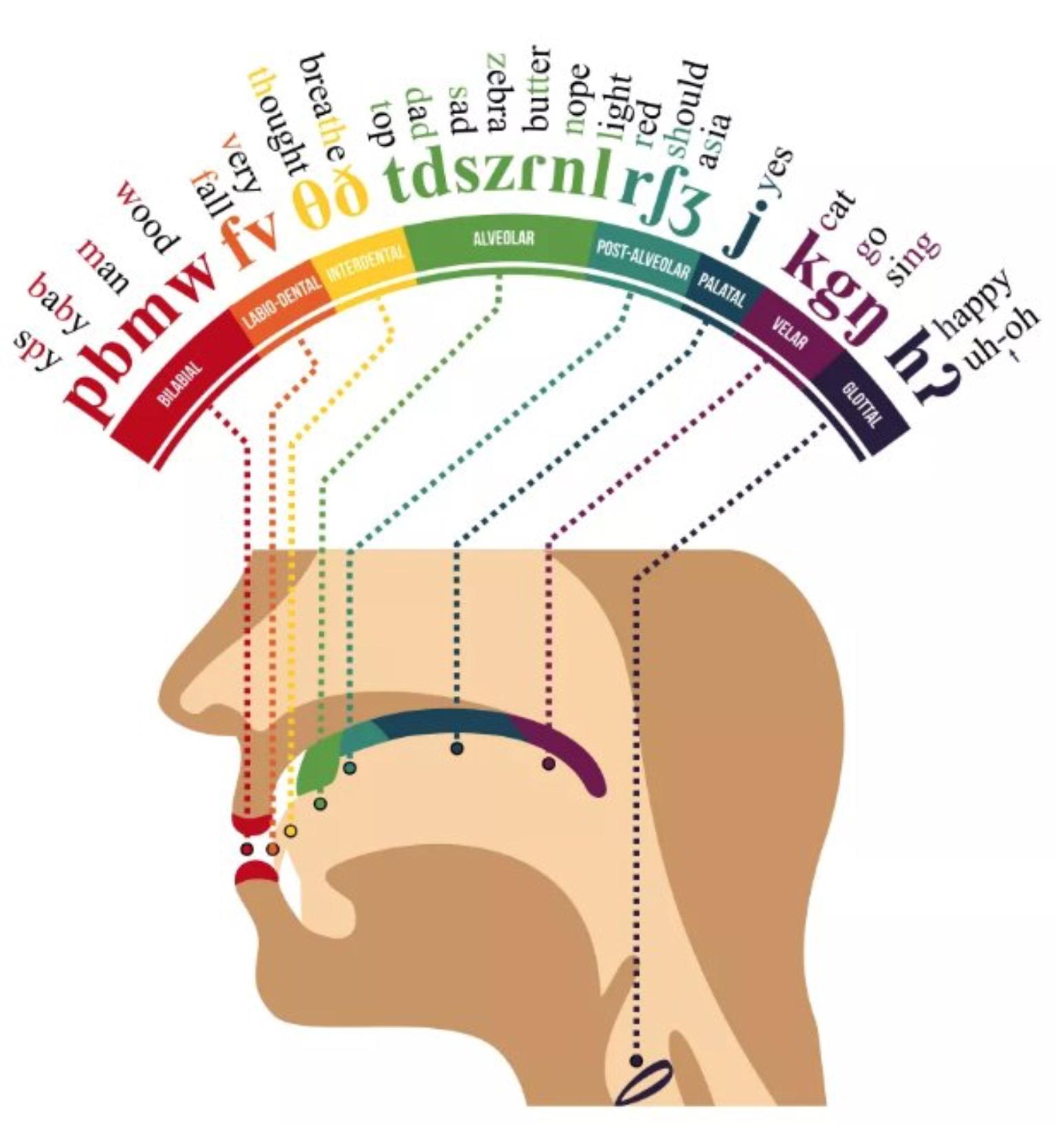 International Phonetic Alphabet Info