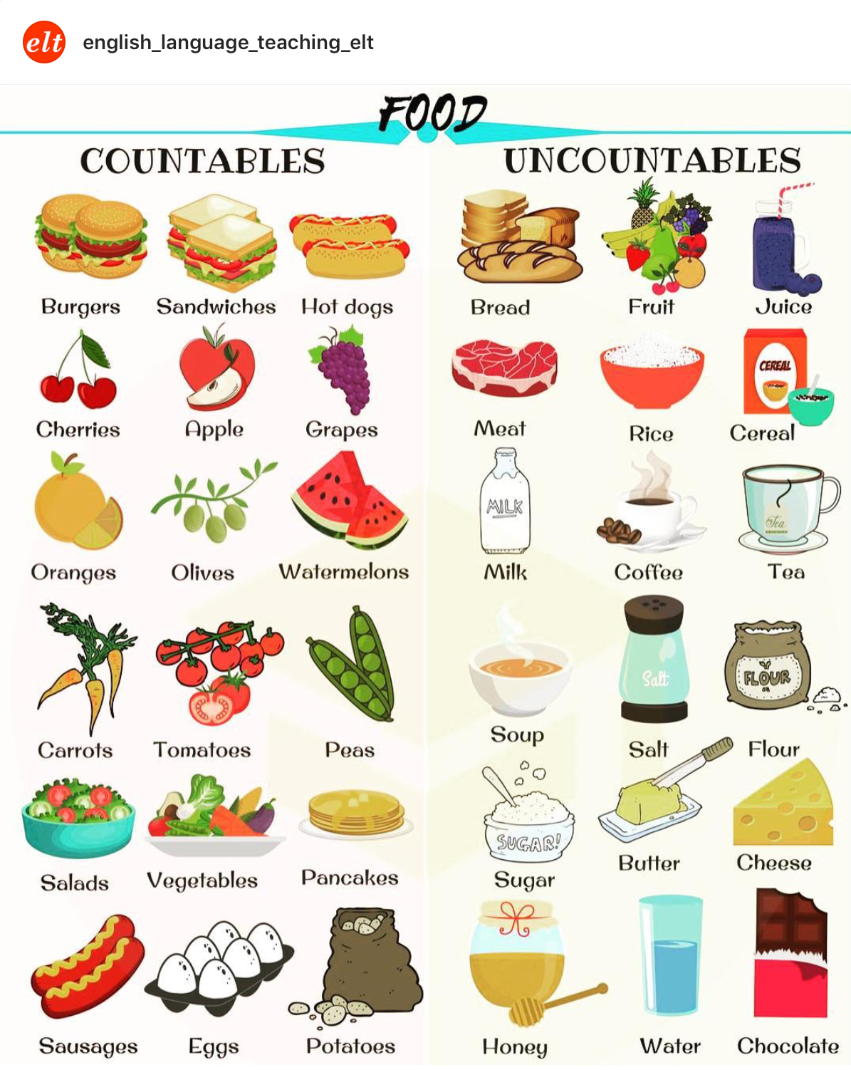Countables Uncountables Food Info