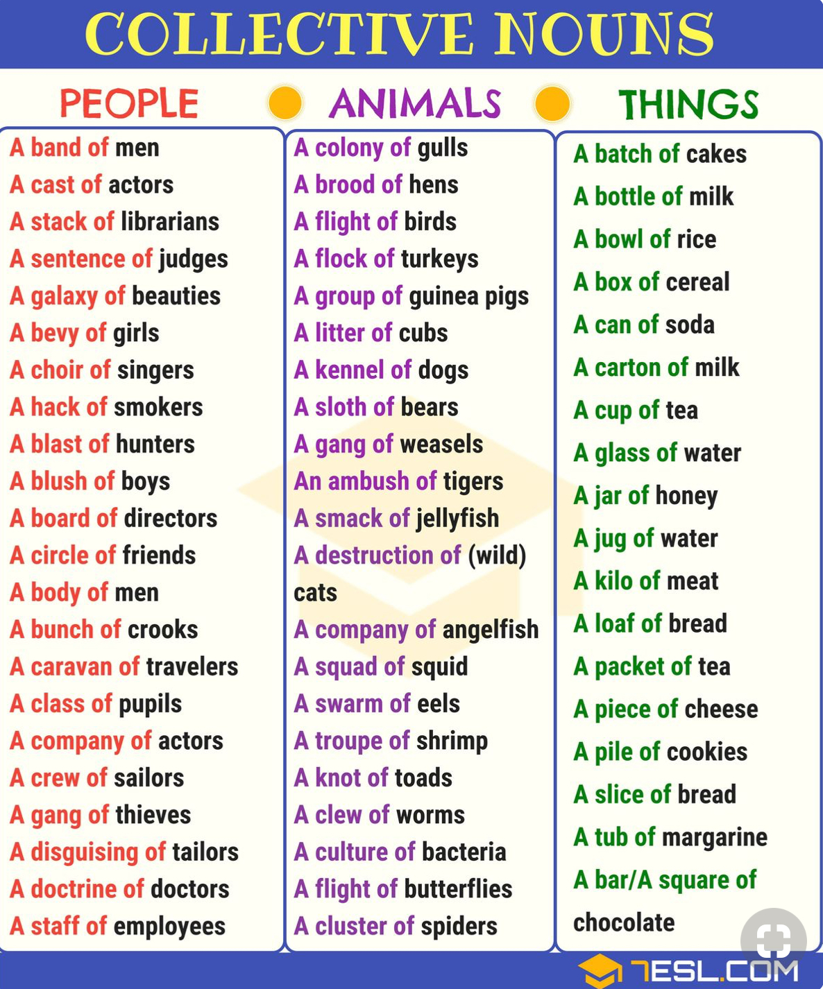 Collective Nouns People Animals Things Info