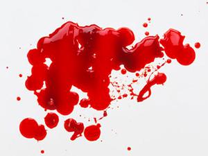 La sangre explicada por Sofía