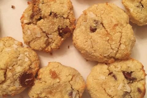 vegan-gluten-free-protein-cookies