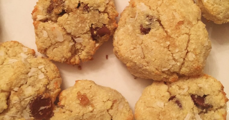 Healthy Coconut Chocolate Chip Protein Cookies (GF // V)