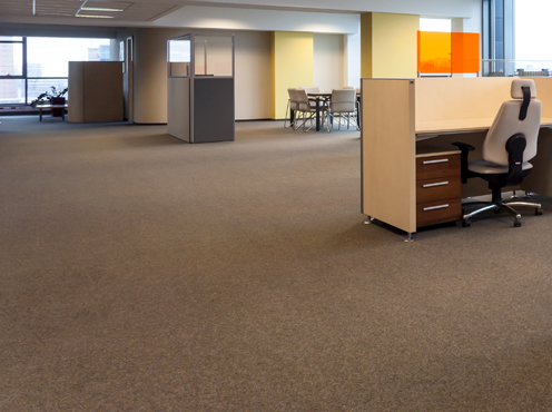 CarpetCleaning3