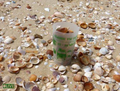 2015 GOBELET Ocean2
