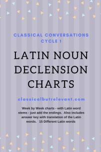 Latin Noun