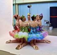 Classical Ballet Tutu - Non Stretch - Sleeping Beauty