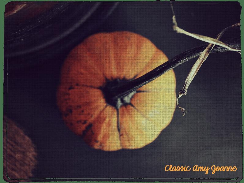 autumn-2016-11