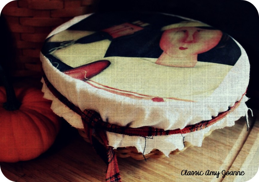 dish covers 5 (2)