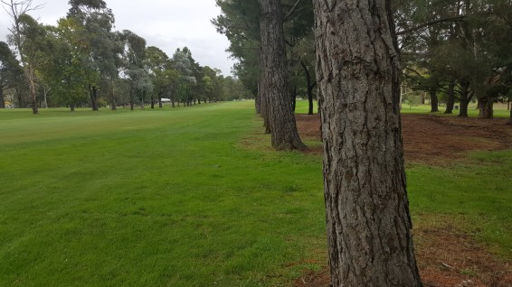 2nd Hole Queanbeyan GC