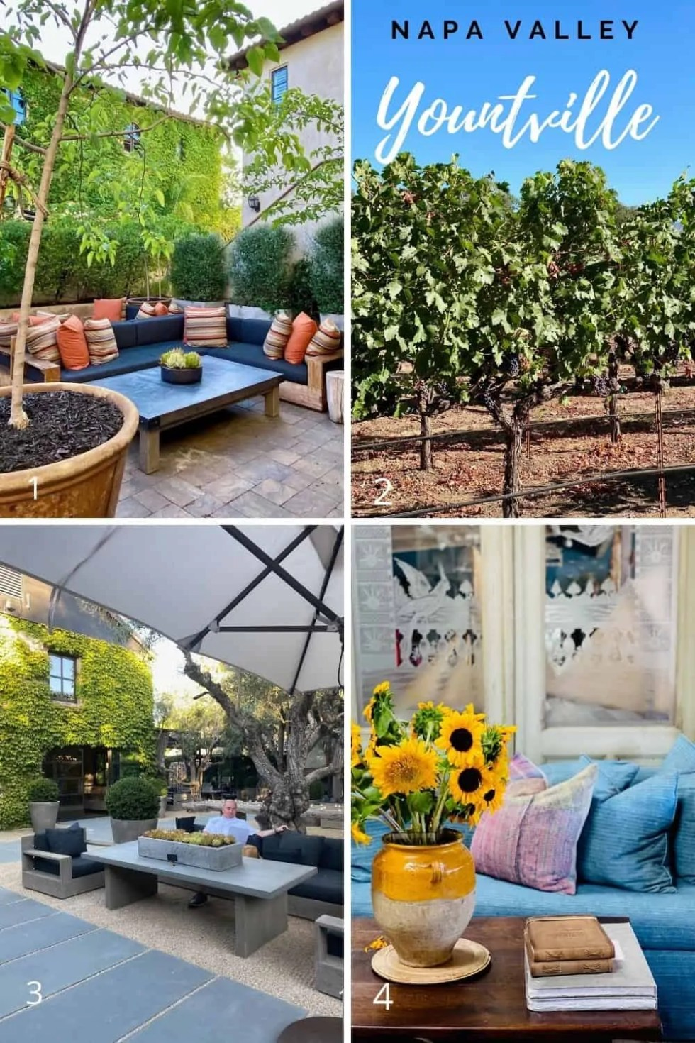 Places to go in Napa Valley