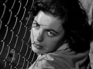 Where Danger Lives 1950 Faith Domergue