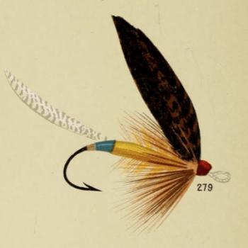 Toodle-bug Bass Fly