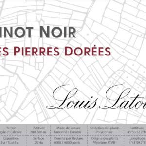Louis Latour 2017 Pinot Noir Les Pierres Dorees - Red Wine