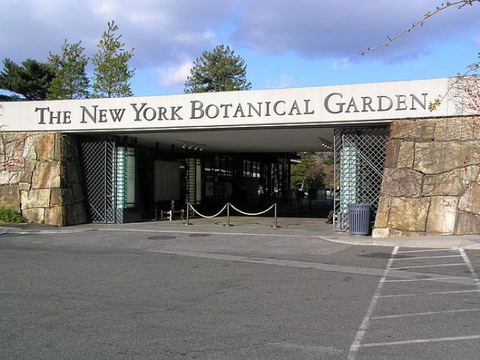 Bronx New York Botanical Garden