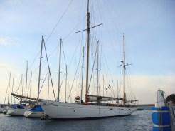 Cynara-Port bow