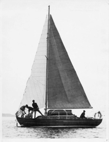 Shembra at the Craig Race starling in 1966