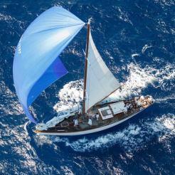 Yanira kite