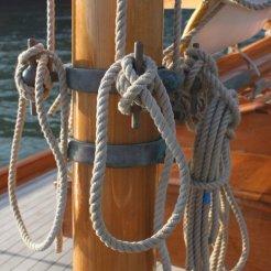 Rosemary III mast