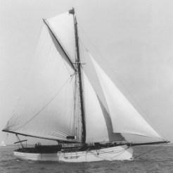 Tally Ho sailing